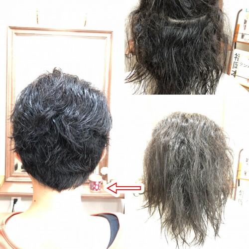 強いくせ毛を広がらないようベリーショートにカット!福岡市南区大橋の似合わせカットが上手な美容室ニュートリノ